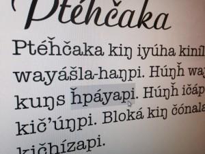 Lakota Fonts_in action